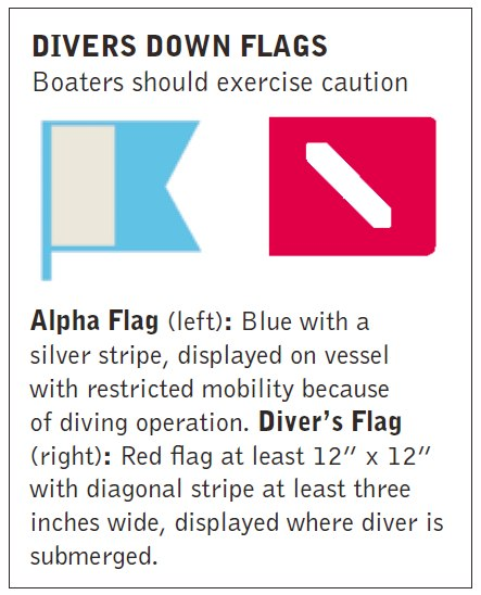 divers down flags