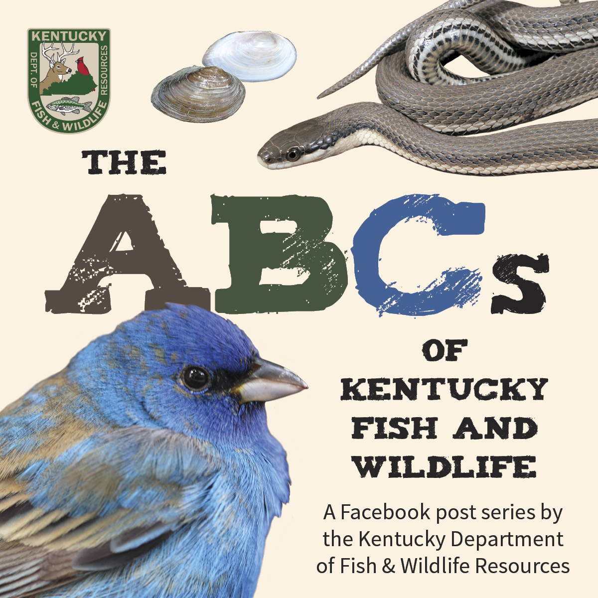 abc of kentucky fish and wildlife