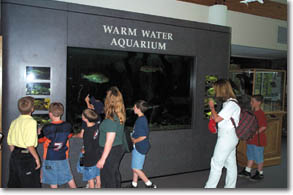 Warm Water Aquarium