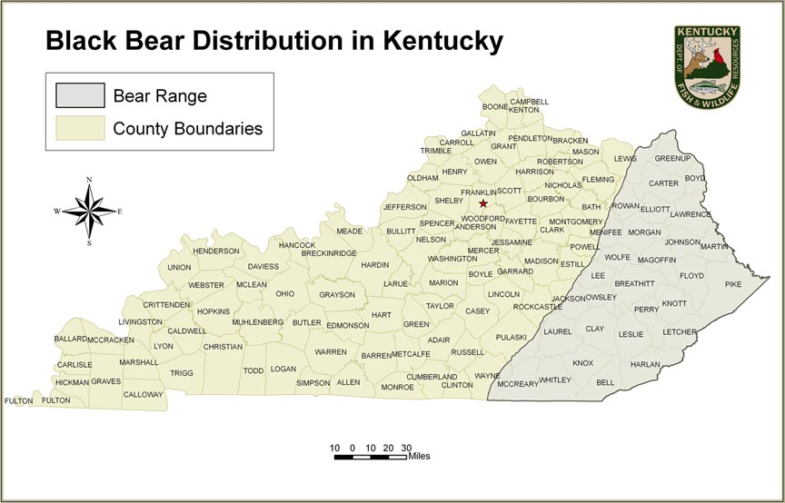Kentucky department of fish wildlife human bear conflicts for Ky fish and wildlife jobs