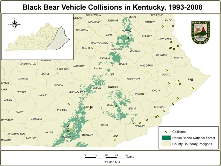 Kentucky Department Of Fish Amp Wildlife Understanding
