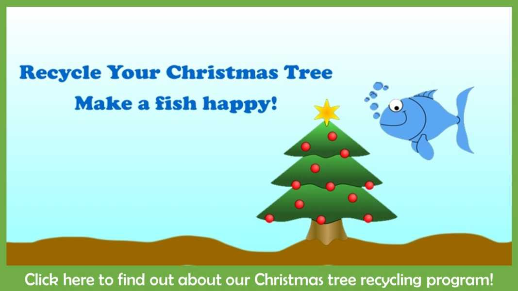 Christmas Tree Recycle.Kentucky Department Of Fish Wildlife Christmas Tree Recycling