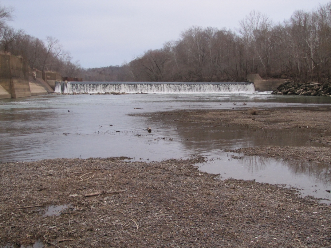 Kentucky department of fish wildlife green river pool 4 for Kentucky fish and wildlife jobs