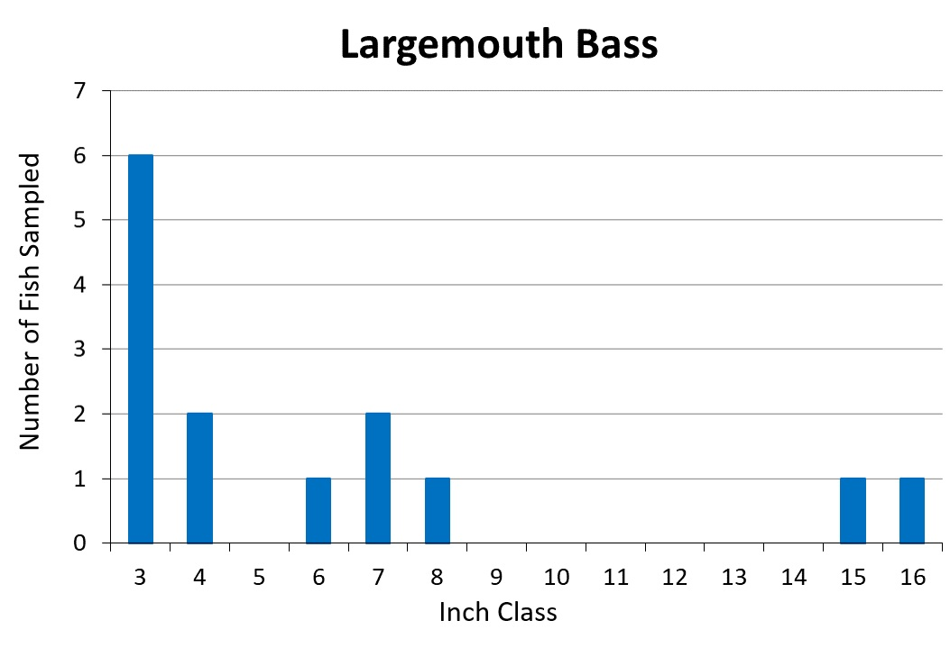 Largemouth Bass length frequency graph