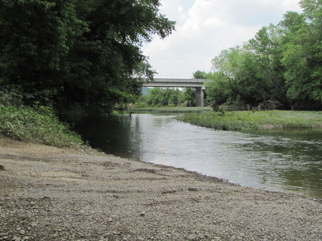 Looking upstream from the gravel ramp at American Legion Park at the Hwy 417 Bridge in Greensburg, KY.