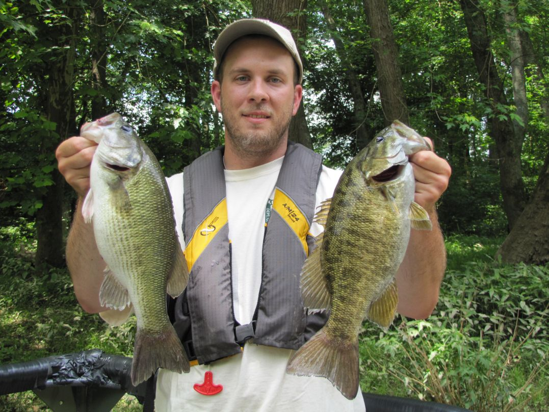 David Baker holds up a nice Kentucky spotted bass (left) and smallmouth bass (right) collected and released during spring sampling near Munfordville, KY.