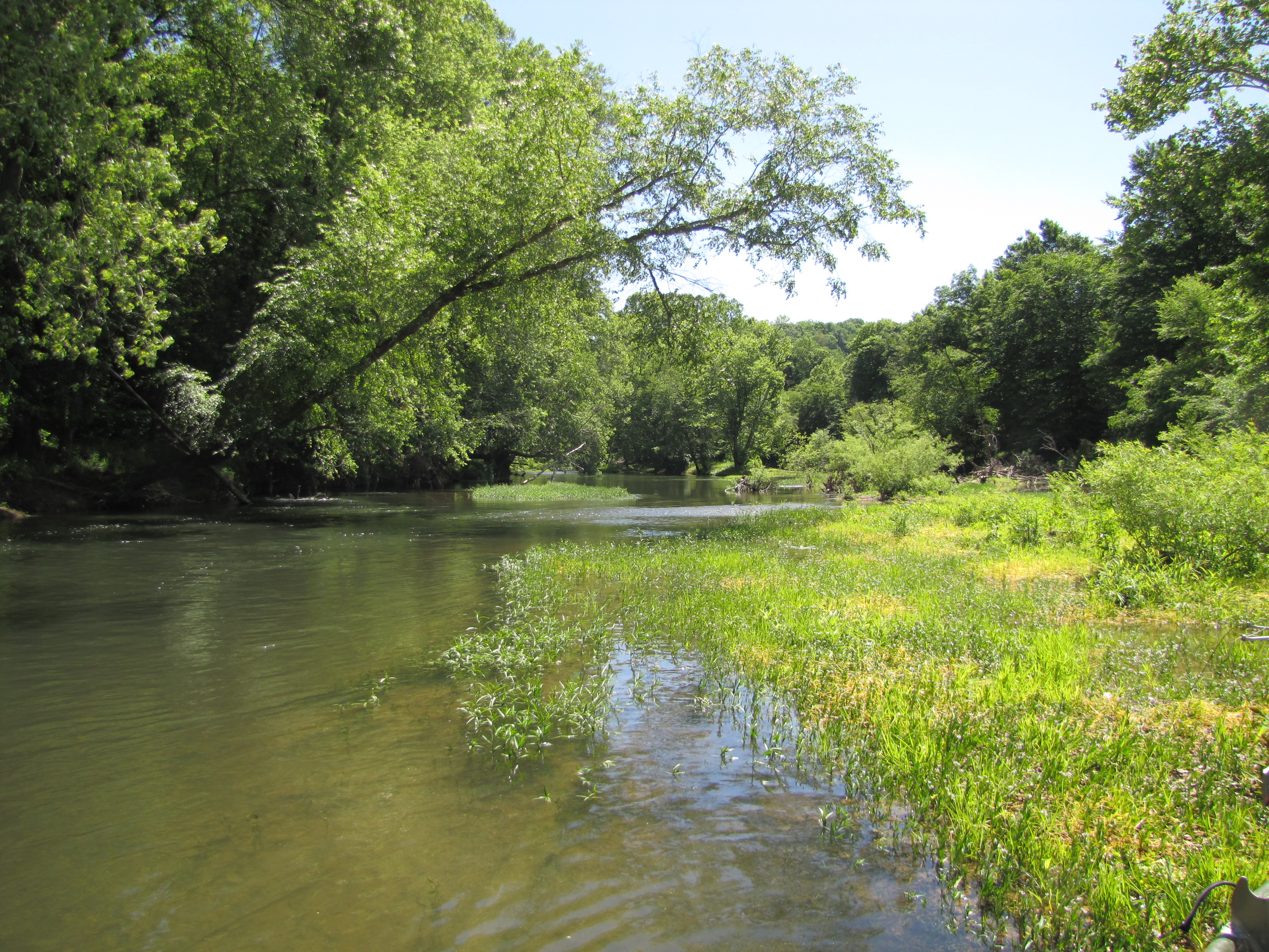 Green River upstream of Roachville Ford is very scenic and offers excellent fishing for smallmouth bass, musky and rock bass.