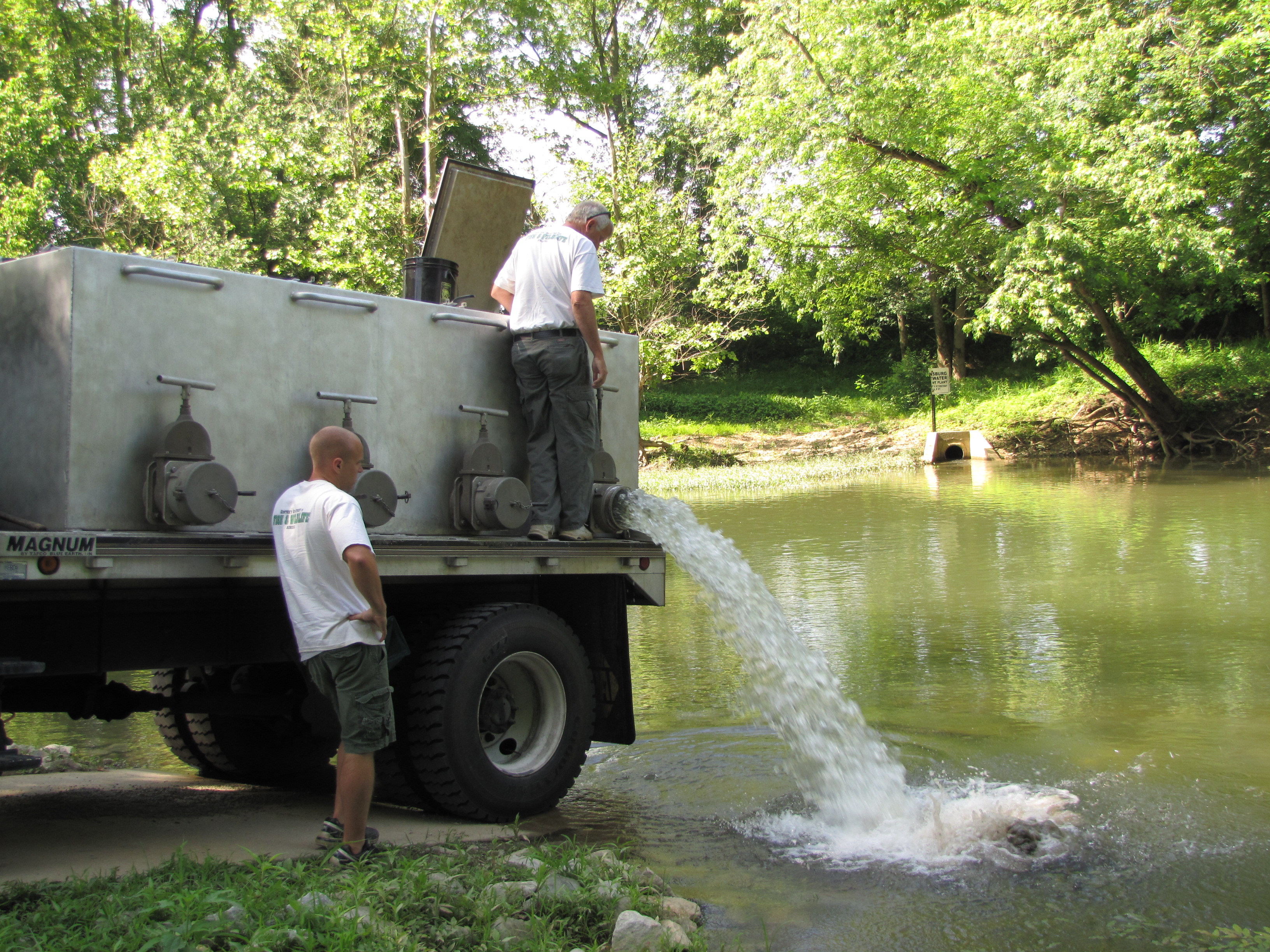 Fisheries personnel stock sauger at the Greensburg City Ramp as part of a research project to re-establish sauger into this section of the Green River.