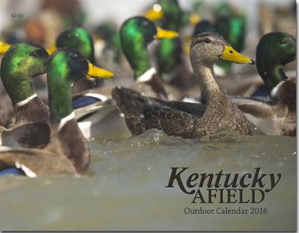 Kentucky Afield Calendar